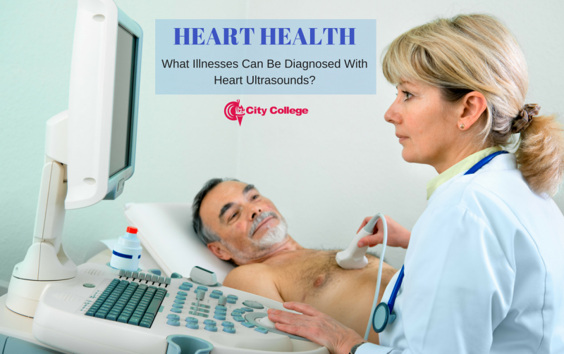 Heart Health :  What Illnesses Can Be Diagnosed With Heart Ultrasounds?